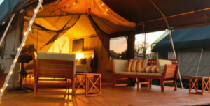 Best Glamping Spots In Sydney